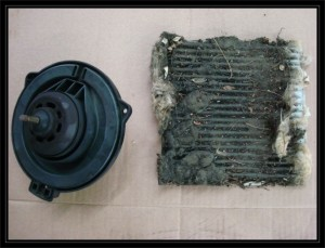 Cabin filter& blower motor